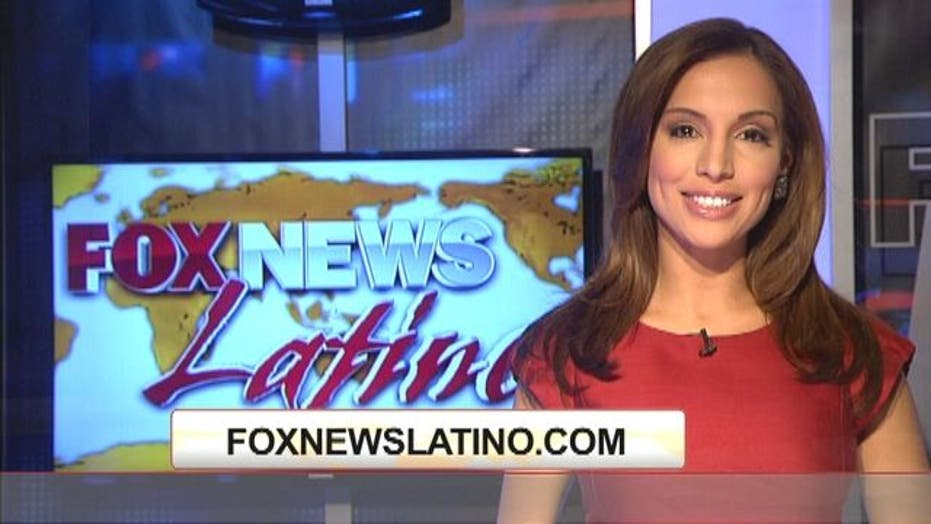 IL to Push for Licenses for Undocumented
